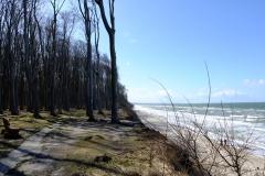 Gespensterwald und Meer