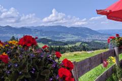 Blick von der Sonthofer Alpe