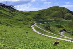 Gipfelstation der Kanzelwandbahn mit dem Riezler Alpsee