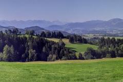 Auf dem Weg nach Oberried in der Nähe von Sonthofen